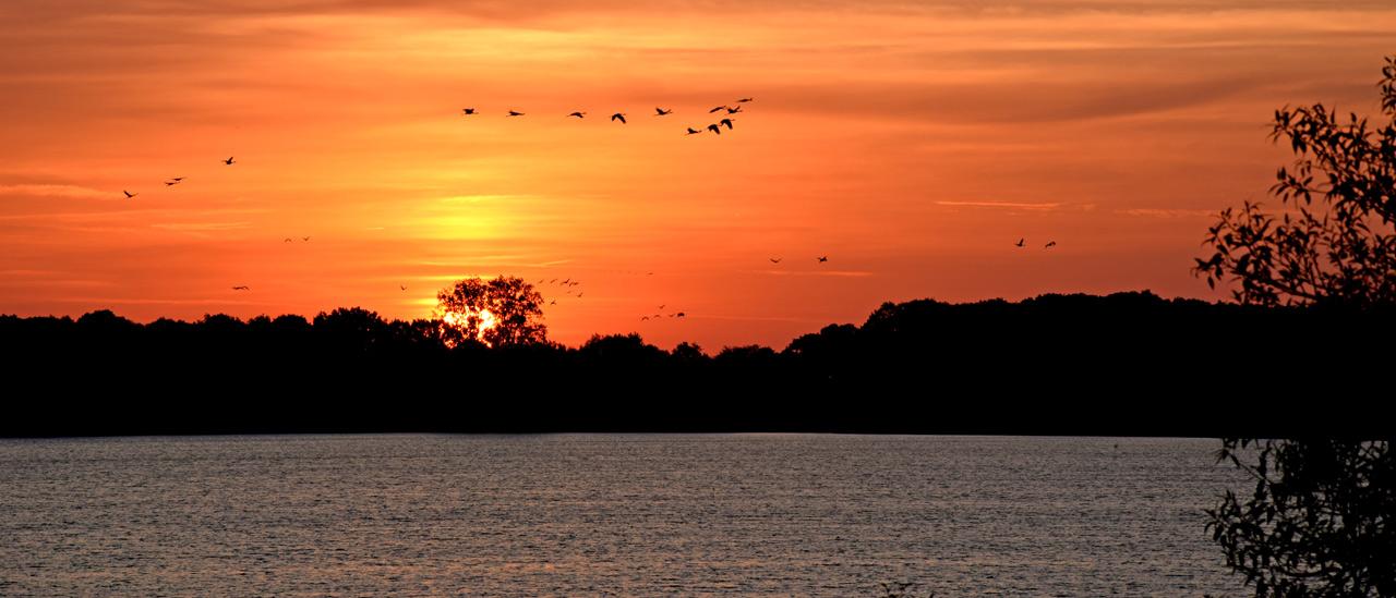 Sonnenaufgang Schaalsee