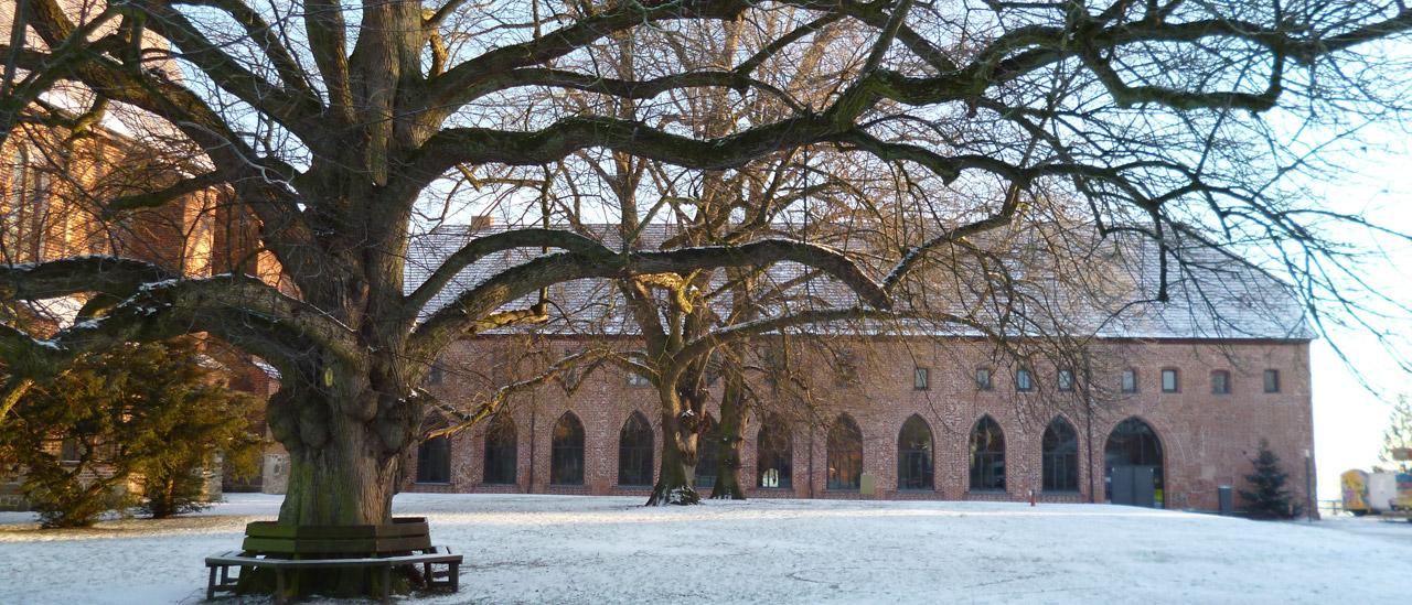 Winter - Blick auf das Kloster mit Linde